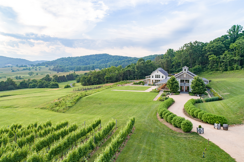 virginia winery home pippin hill farm vineyards